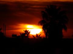 Fiery Orb (Scott Douglas Worldwide) Tags: az arizona awesome amature sky s sunrays smiling sun sunset sexy beautiful badass b bronze bright colour closeup c clouds cute camera