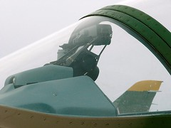"""L-39 Albatros 6 • <a style=""""font-size:0.8em;"""" href=""""http://www.flickr.com/photos/81723459@N04/32751348393/"""" target=""""_blank"""">View on Flickr</a>"""