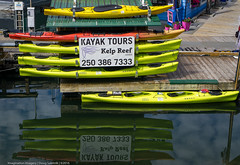 Adventure (DugJAX) Tags: victoria bc britishcolumbia fishermanswharf canada reflection sonyalpha sonya6000