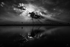 Zeus (st.weber71) Tags: ruhrgebiet ruhrpott rheinland rhein rheinufer nikon nrw niederrhein natur schwarzweis d800 deutschland dinslaken tamron153028 outdoor himmel wasser wolken wasserspiegelung sonne spiegelung wetter wolkenbilder