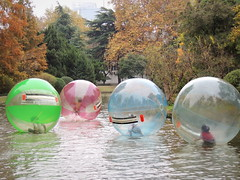 Chinese children fun at the park pond inside inflatable air bubbles (Germán Vogel) Tags: asia eastasia china travel traveldestinations traveltourism tourism touristattraction landmark holidaydestination anhui hefei park downtowndistrict children havingfun entertainment bubble playing four colorful autumn pond water game fun kid childhood xiaoyaojin inflatable