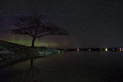 Detroit point northern lights (wiltsepix) Tags: northern lights detroit point higgins lake michigan 1740mm water