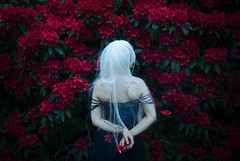 (Lichon photography) Tags: lichonphotography female fantasy fairy flower flowers art elven enchanted emotional woman women witch unqiue
