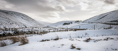 Photo of Lowther Hills