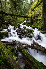 Collide (Aaron Fredericy) Tags: waterfall waterfalls water river creek oregon pacificnorthwest pnw green forest multnomahcreek wahkeenahcreek nd exposure spring