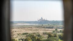 The window: The view of  Sultan Shah Jahan from his jail till his death.   DSC05610-2 (mariomath) Tags: india inde taj mahal agramoghol mumtaz yamuna makrana merveille akbar shah jahan voyagearabais tajmahal 7merveillesdumonde mumtazmahal shahjahan