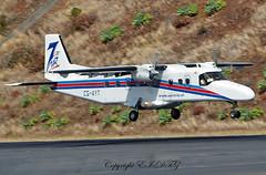 Dornier D0-228-201 CS-AYT Aero Vip (EI-DTG) Tags: planespotting aircraftspotting fnc funchalairport madeira funchal 13jul2015 csayt aerovip dornier do228 turboprop