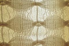 Against the light (adelina_tr) Tags: macro textile white nikond5300 nikkor40mm againstthelight repetition texture 7dwf freetheme throughherlens