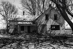 vascular (Flapweb) Tags: georgia vermont abandoned house mono decay