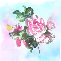 Pretty in Pink (after de Longpré) (bethrosengard) Tags: bethrosengard photomanipulation digitallyenhanced photoart digitalmagic digitalart