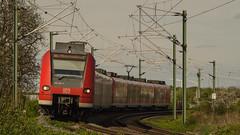 Ab inne' Kurve (marcelmehlhorn) Tags: br et 425 sbahn rheinneckar s3 modernisiert kurve lingenfeld rheinlandpfalz