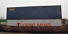 Shipping Containers (Adventurer Dustin Holmes) Tags: 2017 yangming burlingtonnorthern bn traincar shippingcontainer shippingcontainers train railroad