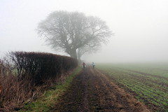 Out Of The Gloom (Alan1954) Tags: walking sussex field fog 2017