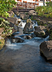 Small Waterfall and Bridge_DSC0302 (Zeta_Ori) Tags: maui grandwailearesort grandwaileahotel grandwailea wailea waterfall hawaii