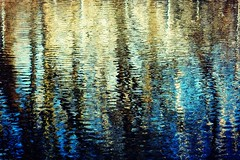 Hidden in Plain Sight 3/21/17 (dianecordell) Tags: abstract reflections water spring march trees quotes queensburyny glenlake cf17 challengefriday nature art