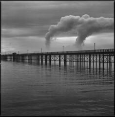 monday - closed (steve-jack) Tags: hasselblad 501cm 80mm cb ilford delta 100 film 120 6x6 medium format southend pier epson v500