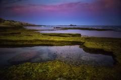 Colorful Coast (David J. Julián) Tags: davidjjulian naturaleza nature coast litoral algarve colors