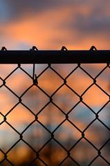 red skies {HFF} (javan123) Tags: fence hff bokeh dof catchycolors nikon redskies silhouette