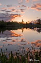 Rietplas (Rene Mensen) Tags: rietplas emmen reflection water lake holland cloud sun evening