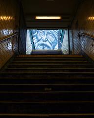Three Eyes are Better than Two (Eric.Burniche) Tags: manhattan manhattannewyork newyorkcity nyc newyork ny subway underground streetart streetshot street graffiti art
