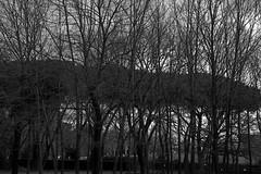 Rami (lumun2012) Tags: lucio mundula bw biancoenero monocrome