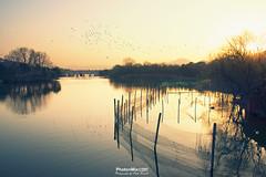 Days End at Xianghu (Andy Brandl (PhotonMix)) Tags: landscape sunset winter hills lake zhejiangprovince china asia flockofbirds fence xianghulake xiaoshan hangzhou manmadelake tranquilscene contemplative photonmix