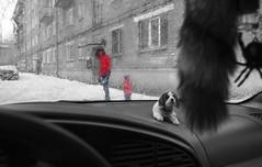 049 (АндрейНовиков1) Tags: people window