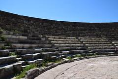 DSC_0231 (mark.greefhorst) Tags: cyprus northerncyprus salamis ancientworld roman theatre