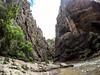 The Narrows - Zion National Park Utah (nikkinicknicol) Tags: the narrows zion national park walking hiking sticks rocks water trees sky green plaints utah