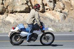 I don't know (twm1340) Tags: jerome az arizona 89a suzuki dual purpose enduro street 650 explore explore131