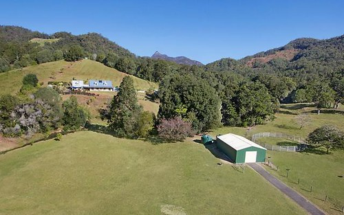 335 Chilcotts Road, Crystal Creek NSW 2484