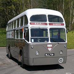 1953 AEC Regal IV airport coach (davocano) Tags: mll738 bea britisheuropeanairways brooklands londonbusmuseum springgathering2017 738