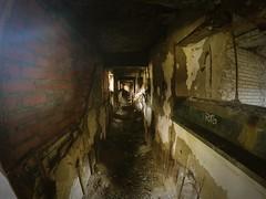 run (Based Dan) Tags: graffitti buffalo ny train terminal abandoned explore exploration tags throws supreme palace art