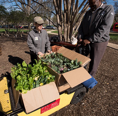 20170405-AMS-LSC-1952 (USDAgov) Tags: usda departmentofagriculture usdepartmentofagriculture peoplesgarden nationalmall washington dc planting seed sprout tools soil garden transplant plant align spring coolweather