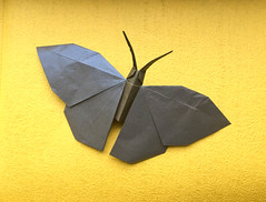 Butterfly (日輪富 Philogami) Tags: origami philogami butterfly hideo komatsu art folding shadow fold paper insect tanteidan