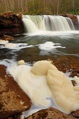 High Falls: Foam (Shahid Durrani) Tags: high falls monongahela national forest cheat river west virginia