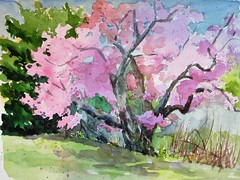 NY Botanical Garden (softfurn Susan) Tags: nybotanicalgarden nyc bronx garden cherryblossoms watercolor enplainair sketch sketchbook painting nycurbansketchers