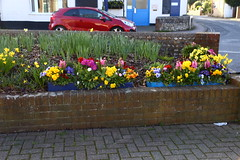 East Preston in Flower (tiger289 (The d'Arcy dog supporters club)) Tags: eastpreston westsussex villagegreen dogs penangvillagerestaurant flowers trees beach waves breakwaters sea searoad sealane heraldry architecture clockhouse clocktower plaques villagelife cars boules