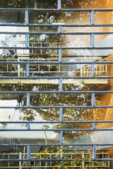 Treehouses (Djaron van Beek) Tags: reflection transitions windows staircase patterns lines blue tree stairs elaborate eclectic windowframes repetitions yellowbrickwalls rhythm building school floors composition chaotic angle brightlight reflectionoftreemingleswiththeinsideofthebuilding corridors balustrades railings notthatmuchprocessed urban deserted abstract somanydetails geometry rectangles complex intricate blurred djaron djaronvanbeek