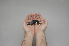 109/365 - safe hands