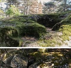 Ameliorated natural, or, fully man made basins (AJ Mitchell) Tags: basin lodeve channel rigole sandstone monolith erratic pagan ceremonial bélènos gaulois