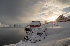After the snowfall... (dam.he) Tags: norway norwegen lofotenislands pentax winter skandinavien digermulen da15limited scandinavia vågan nordlandcounty hinnøya k01 northernnorway