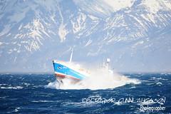 Friðrik Sigurðsson AR 17 (Bergthor) Tags: d3s sigma150600s nikon ship sea stormysea shipsphotos boat shipinbadweather weather wave