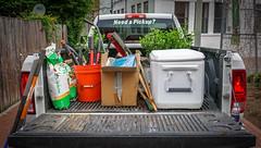 2017.04.29 Vermont Ave Garden-Work Party Washington, DC USA 4132