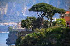 Introducing Sorrento (1) (jackfre 2) Tags: italy sorrento amalficoast city resort cliffs sea spectacularviews perfect view
