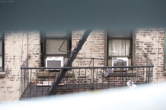 Prison Break (Pamela Saunders) Tags: newyork street photography dof fireescape stripes prison convict nyc
