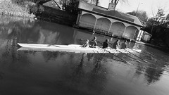 rowing practise 01 (byronv2) Tags: blackandwhite blackwhite bw monochrome peoplewatching candid unioncanal edinburgh polwarth slateford harrisonpark water boat scull row rowing rower rowers rowingteam rowingscull spring sunny sunlight sunshine architecture building boathouse