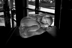 A Great Wish... (mehtasunil) Tags: agreatwish glasssculpture bowersmuseum socal santaana newborn leicalens leicaimages leicacamera leicasl voigtlander 40mm nokton40mm reddot skancheli redmatrix monochrome lorettayang