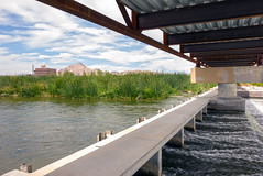 Looking at Wier Under Bridge (ken mccown) Tags: nevada erosion wetlands mojavedesert urbanriver lasvegaswash clarkcountywetlands