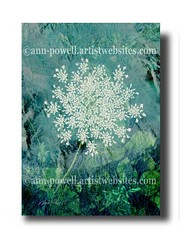 Quenn Anne's Lace copyright Ann Powell (annpowellart) Tags: flowers abstract flower art floral colorful abstractart contemporary modernart fineart paintings wallart abstracts flowerart annpowell flowerwallart annpowellart trentypainting